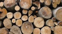 Pan shot of Firewood stack Stock Footage