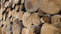 Firewood stack Dolly shot  - stock footage