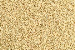 Amaranth seeds Stock Photos
