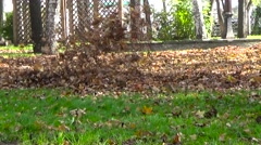 Leaves Flying blowers fly Stock Footage