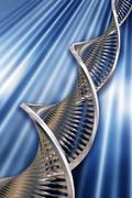 DNA strands - stock photo