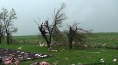 Pink Tornado Stock Footage