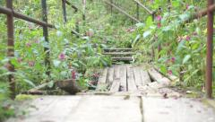 Broken wooden bridge and stairs in the forest Stock Footage