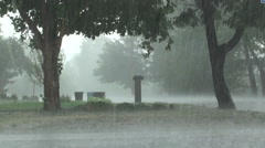 Downpour of Rain during Summer Thunderstorm Stock Footage