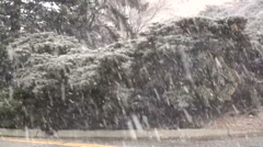 Heavy Wet Snow Flakes Fall during a Spring Snowstorm Stock Footage