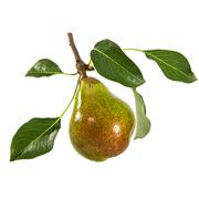 Pear isolated on white background Stock Photos