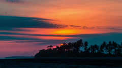 4K Timelapse. Sunset on the background of palm trees Stock Footage
