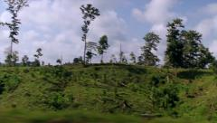 Driving through Burmese landscape with Lush vegetation in Myanmar Stock Footage