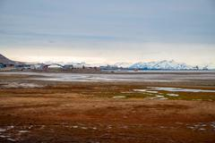 Arctic tundra in summer, Svalbard Stock Photos