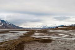 Arctic tundra in early summer mud, Svalbard Stock Photos