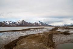Arctic tundra in early summer mud, Svalbard Stock Photos