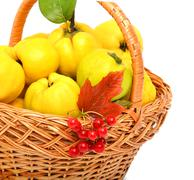 quince in the basket isolated on white background - stock photo