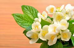 Jasmine flower bouquet on wood Stock Photos