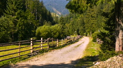 Bike in the Carpathian Stock Footage