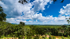 Timelapse of passing clouds over rubber tree garden Stock Footage