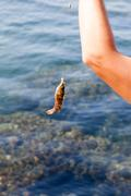 fish hooked on a hook against the sea - stock photo