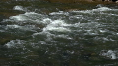 White Water in a small River - stock footage