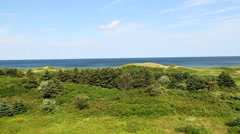 Sea and green grass landscape panoramic Stock Footage