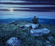 tree and boulders on hillside meadow in mountain at night - stock photo