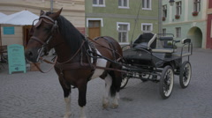 Horse with carriage in Fortress Square, Sighisoara Stock Footage