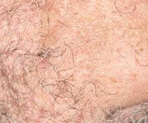 Stock Photo of hair of the beard. close-up