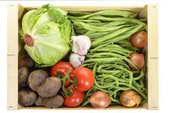seasonal vegetables in a crate isolated on a white background - stock photo