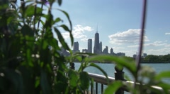 Chicago skyline Focus change City to Plant Stock Footage