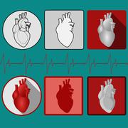 Human heart icon with cardiogram - vector Stock Illustration