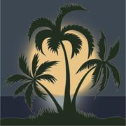 Palms in the Moonlight on the Beach - vector Stock Illustration