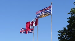 Flags of canada and British Columbia slow motion Stock Footage