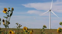 Wind Turbine Rotates in Background of Sun Flowers Blowing in the Breeze Stock Footage