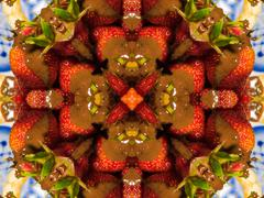 Stock Illustration of colorful seamless mandala design