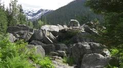 Rockgarden trail Glacier national park Stock Footage