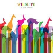 Vector image of an animal groups. Wildlife Stock Illustration