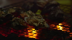 Cooking Over Fire 3 Stock Footage