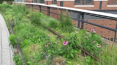 highline project New York - stock footage