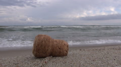 Champagne cork lying on  beach  sand by  sea Stock Footage