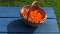 Wicker basket full of calendula blossoms - stock footage