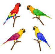 Set of beautiful colorful parrots isolated on white background - stock illustration