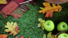 Autumn picnic with fresh caramel apple slices. - stock footage