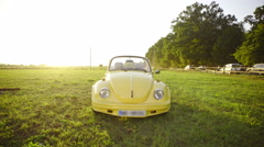 Beetle front view in green park 4K Stock Footage
