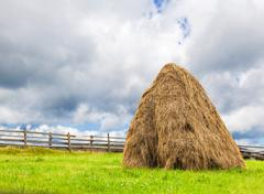 sheaves of hay in the Carpathians - stock photo