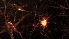 Neuron network with electric impulses. Synapse. Brain. Warm colors. Dolly. Stock Footage