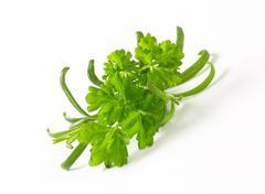 Fresh culinary herbs Stock Photos