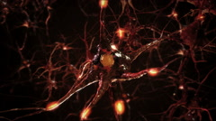 Flying across a neural network, electric impulses pass by it. Orange. 2  in 1. - stock footage