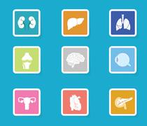 Human organ icon set. Modern flat design anatomy icons Stock Illustration