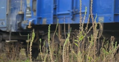 Long Freight Train Moves On The Railroad Track Blue Freight Wagons Close View Stock Footage