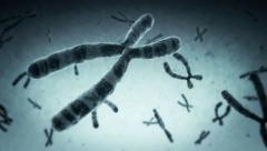 Highly detailed animation of chromosomes floating. Loopable. Blue. Stock Footage