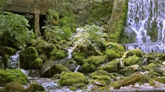 mountain river with waterfall - stock footage