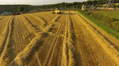 AEREAL VIEW: Combine harvester in barley field Stock Footage